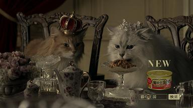 """アイシア新CF""""猫の王国「国歌」篇""""、4月9日(月)、WEB上にて公開!<br />~キミがやって来た日から、我が家は猫の王国になりました~"""