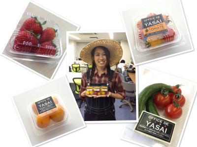 KOMPEITO、働く人や企業のヘルシー化を促す<br />オフィス向けプレミアム野菜サービス「OFFICE DE YASAI」を提供開始