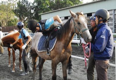 馬と共に生徒が成長する高校 「馬の学校 東関東馬事高等学院」では、10月より競走馬を育てる授業をスタートします。