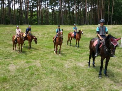 ホースセラピー効果をとり入れ、馬と過ごし乗馬で学べる全寮制の高校。癒しと刺激で充実した高校生活。不登校の高校進学や転校・転入学で悩む生徒たちの再チャレンジサポート。11月より新規生徒募集を本格開始。