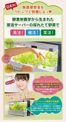 「完全無農薬野菜」を食べたい時に食べたい分だけ収穫して食べられる【日本初!菜活サーバー登場!!】2017年9月16日発売!!