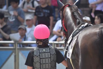 未経験から在学中にJRA(日本中央競馬会)の厩務員を目指せる「馬の学校 東関東馬事専門学院(通称:バジガク)」が、平成31年4月生の最終募集を受け付け開始しました。5年間で30名の厩務員輩出を目指す。