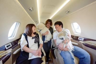 愛犬にも寂しい思いはさせない! 愛犬も一緒!プライベートジェットで行く愛犬旅