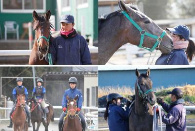 セリで他に買い手がない馬たち「クラウドファンディング」で購入。千葉県八街市の馬の専門学校「馬事学院(バジガク)」学生たちが育て6月7日の大井競馬4Rでデビューへ/313kg過去最少馬のデビューへ